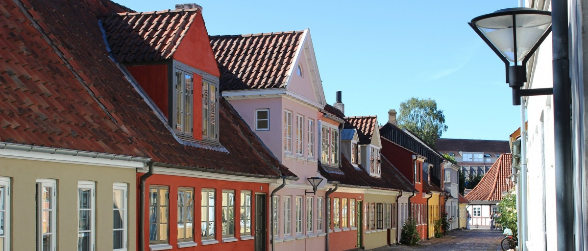 malerfirma Odense